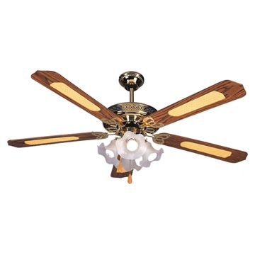 Ceilingfan ae390assignment5 when it was first invented by philip diehl over the years there have been many improvements made to the ceiling fan including use of a smaller motor as aloadofball Choice Image