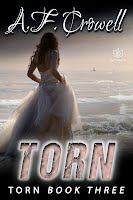 TORN, Book Three in the Torn Series