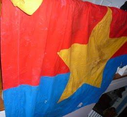 Vietcong Flag P1050001