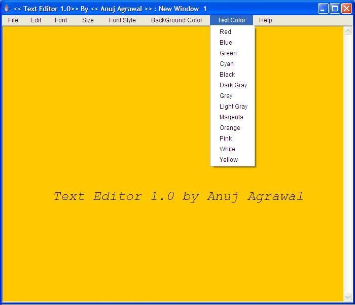 Text Editor Screen shot