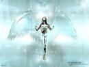 angel 3D
