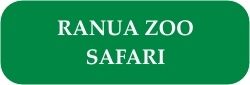 Ranua Zoo Safari