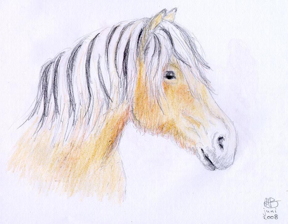 paardentekeningen - arinabezemer