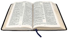 View Online Bible (All Versions & Languages)