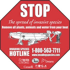 Stop Invasive Species