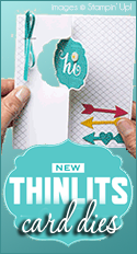 Thinlits Dies by Stampin Up
