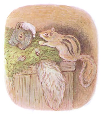 The Tale Of Timmy Tiptoes Beatrix Potter Stories
