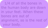 1/4 of the bones are in the feet