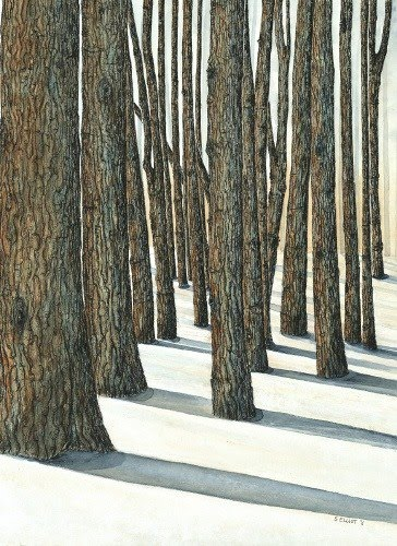 Forest Paintings