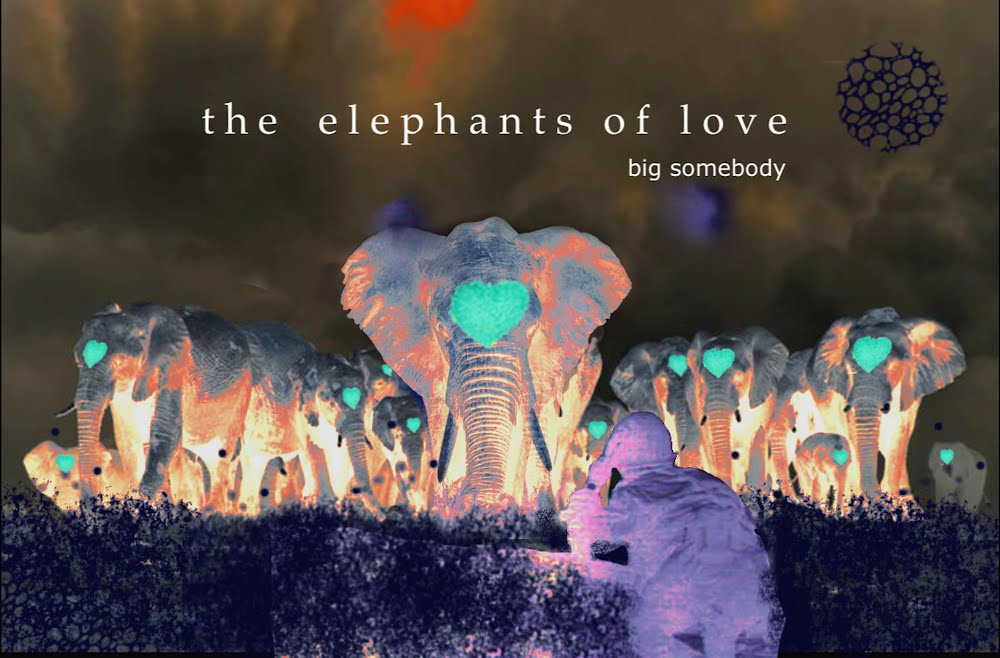https://big-somebody.bandcamp.com/album/the-elephants-of-love