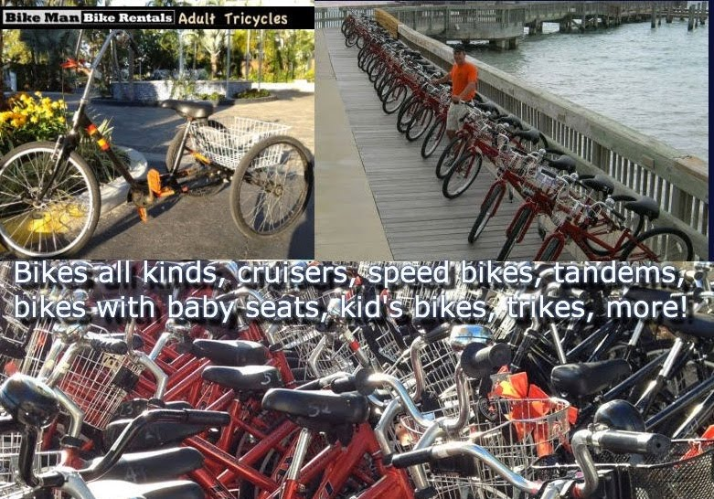 bicycle types for rental
