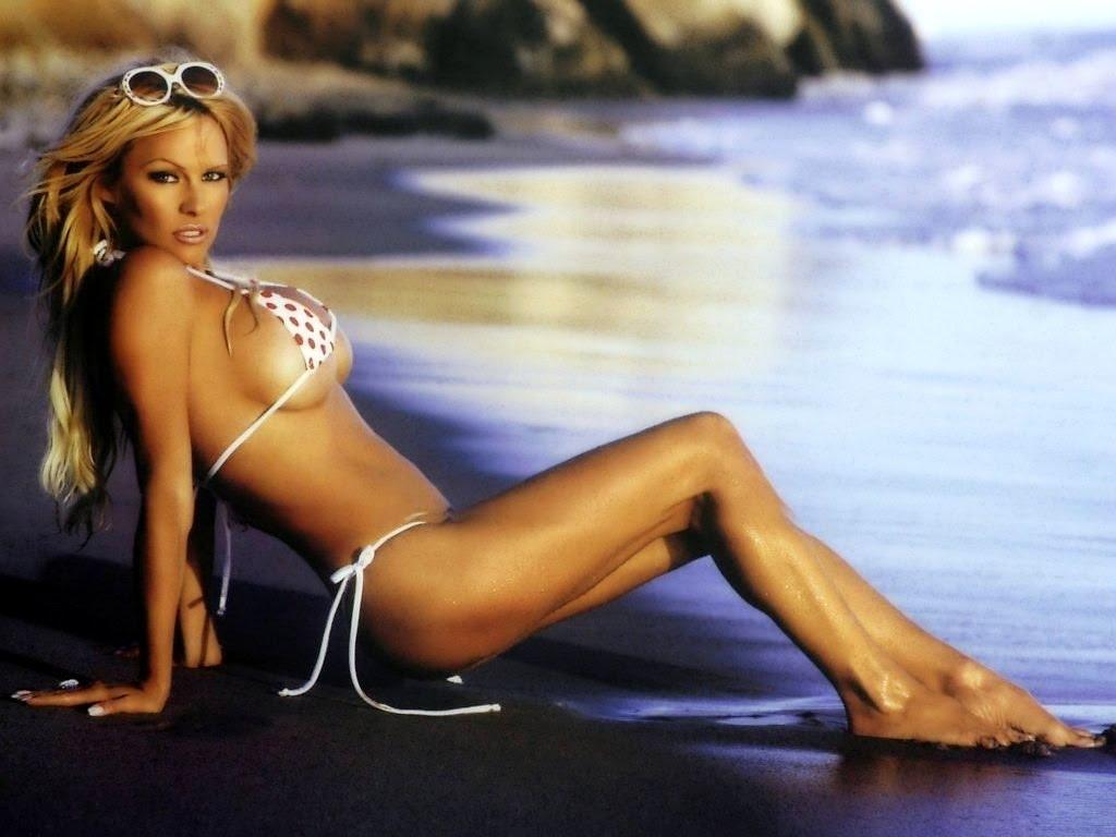 Pamela Anderson Sexy Wallpapers 4.jpg