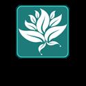 मोगरा फुलला
