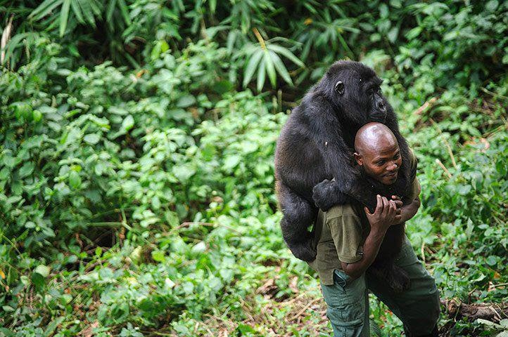 """MM%20Photo%20from%20Facebooks%20page%20Helped%20by%20Animals%208 - """"Don't ever leave me!"""" - Photos Unlimited"""