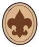 http://www.scouting.org/scoutsource/BoyScouts/AdvancementandAwards/joining.aspx