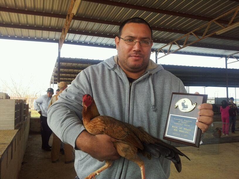 "Winner ""Best of Class"" with a Hennie"