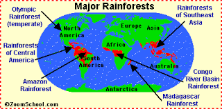 Where tropical rain forest is on a map   Caitlin Micallef biome