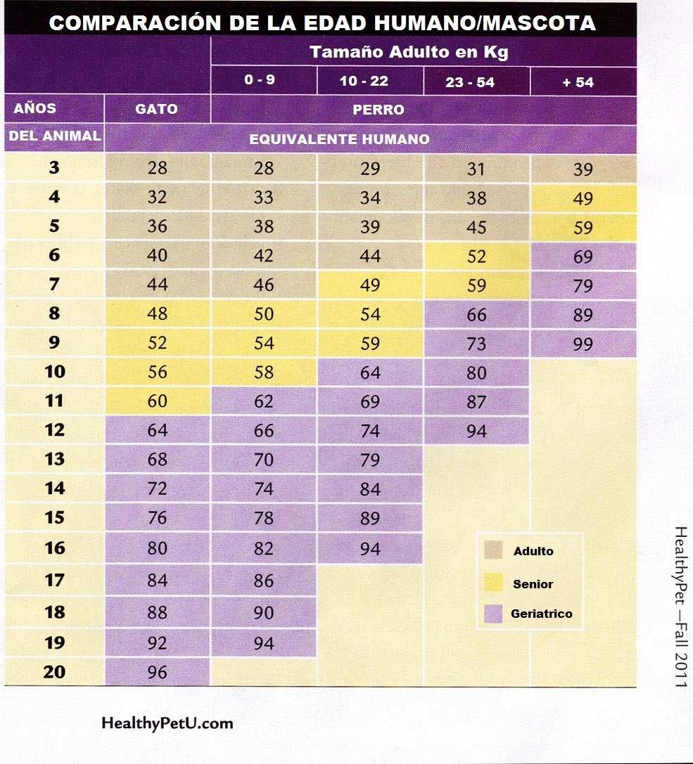 https://sites.google.com/site/calbitxet/curiosidades-y-consejos/comparaciondelaedadhumano-mascota/age-chart.jpg?attredirects=0