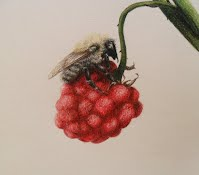 Bee on a Raspberry