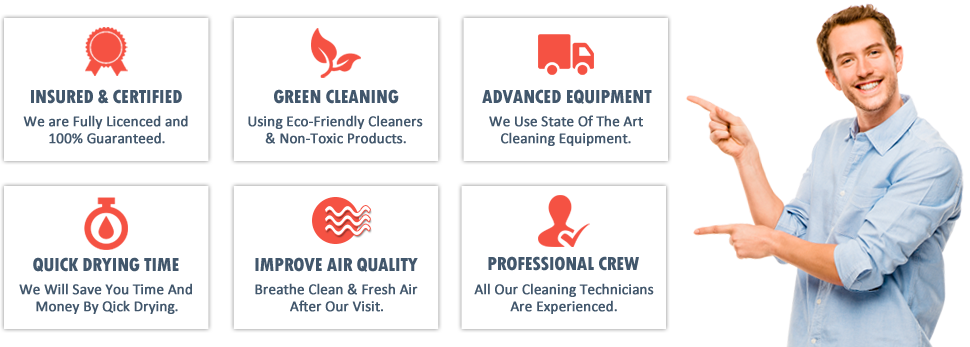 http://www.sugarlandcarpet.cleaning/professional-cleaners/why-choose-us.png