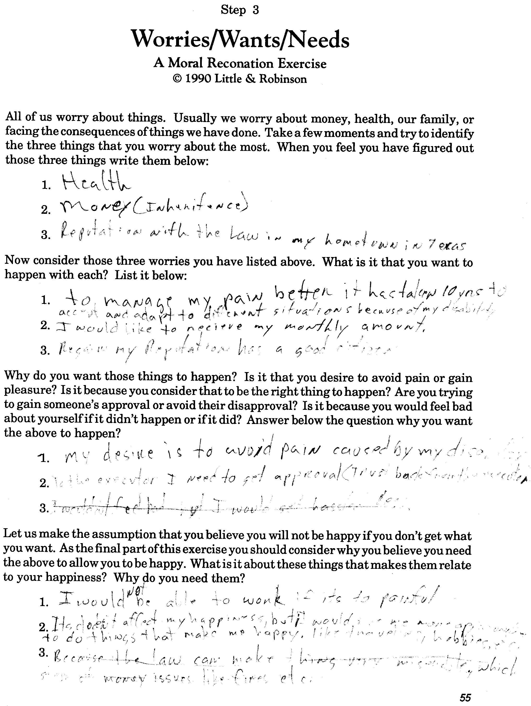 worksheet 10th Step Worksheet drugcourt caryhayes2003 step 3 worries wants needs jpg
