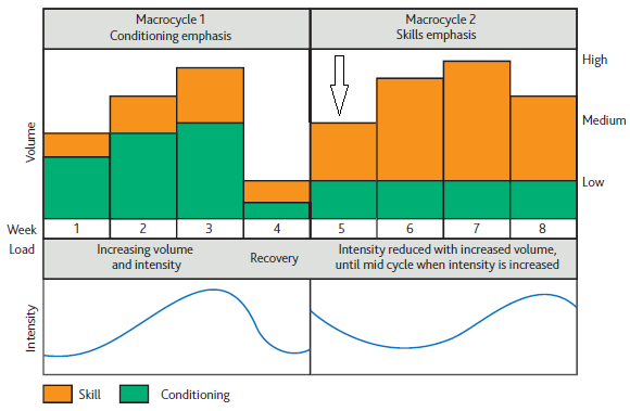An analysis of the types and stages of periodization or training in cycles