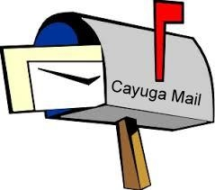 https://sites.google.com/site/cayugaelementaryschool/home/cayuga-mail