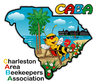 Charleston Area Beekeepers Association logo - bee sipping nectar from flower from lawnchair on beach with Charleston skyline in the background