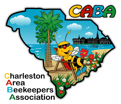 Charleston Area Beekeepers Association logo; bee sitting in lawnchair on beach sipping nectar from a flower with Charleston skyline in the background