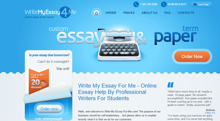 Write my essay for me com