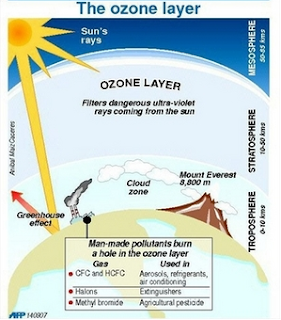 the impact of ozone depletion The ozone depletion process begins when cfcs (chlorofluorocarbons) and other   health and environmental effects of ozone layer depletion there are three.