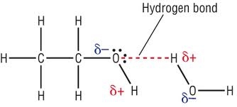 2  Properties of alcohols - Alcohol, carboxylic acid and esters