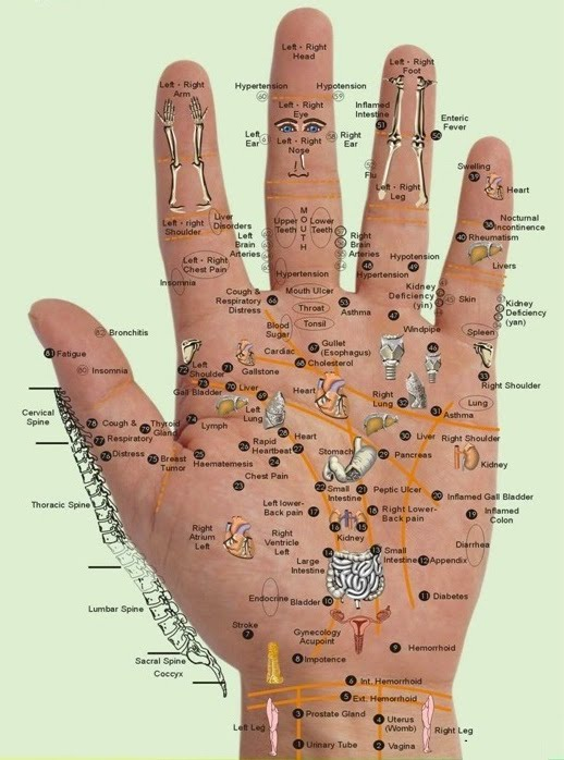Acupuncture and Acupressure Therapy - chinese acupuncture