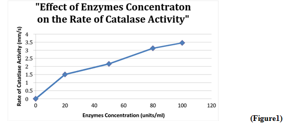 catalase activity An increase in catalase activity is observed in experimental halothane hepatotoxicity, endotoxemia, and hepatitis, as well as in patients with hemolytic diseases.