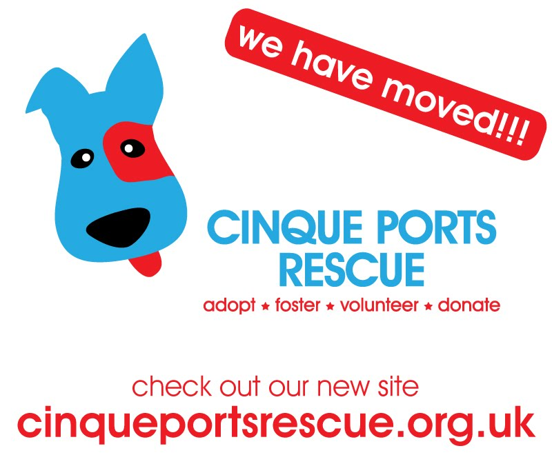 http://cinqueportsrescue.org.uk/