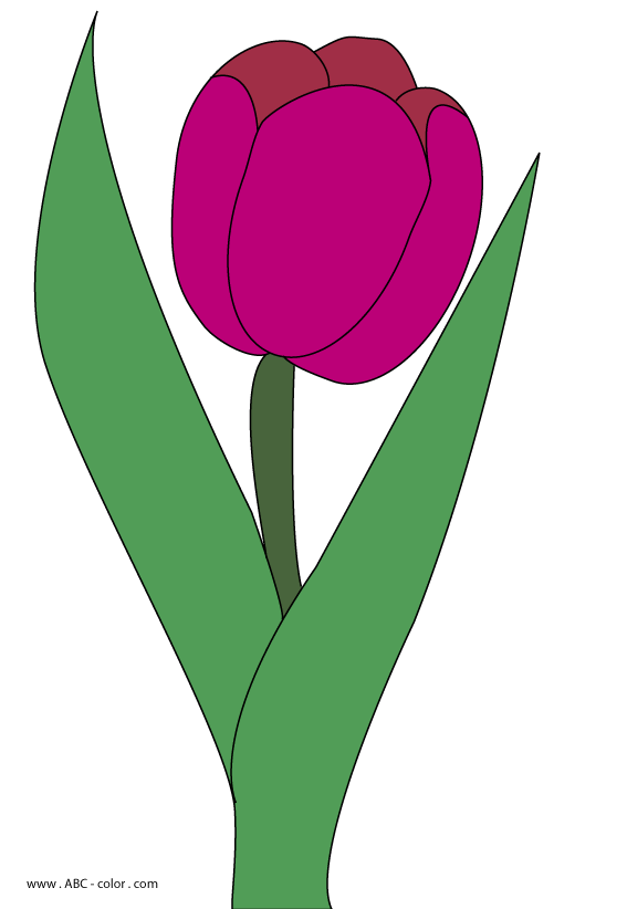 free png Tulip Clipart images transparent