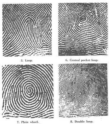Fingerprints Intro - Crime Scene