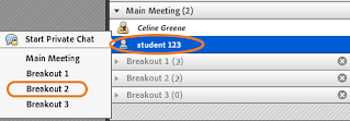 screen clipping of assigning attendees manually to breakout rooms in Connect