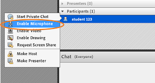 screen clipping Connect Enable Microphone from Attendee pod
