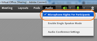 screen clipping of Connect Audio drop-down menu