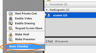screen clipping Connect Mute Attendee