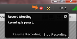 screen clipping from Connect showing an paused recording icon and the information box