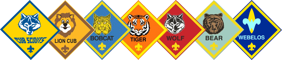 Image result for lion cub scout