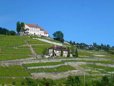 Lavaux Hills