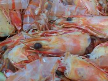 prawns anyone? - lot's of prawn heads and tails lying in a heap, with prominent eyes, looking like seafood rubbish - as prawn scraps are