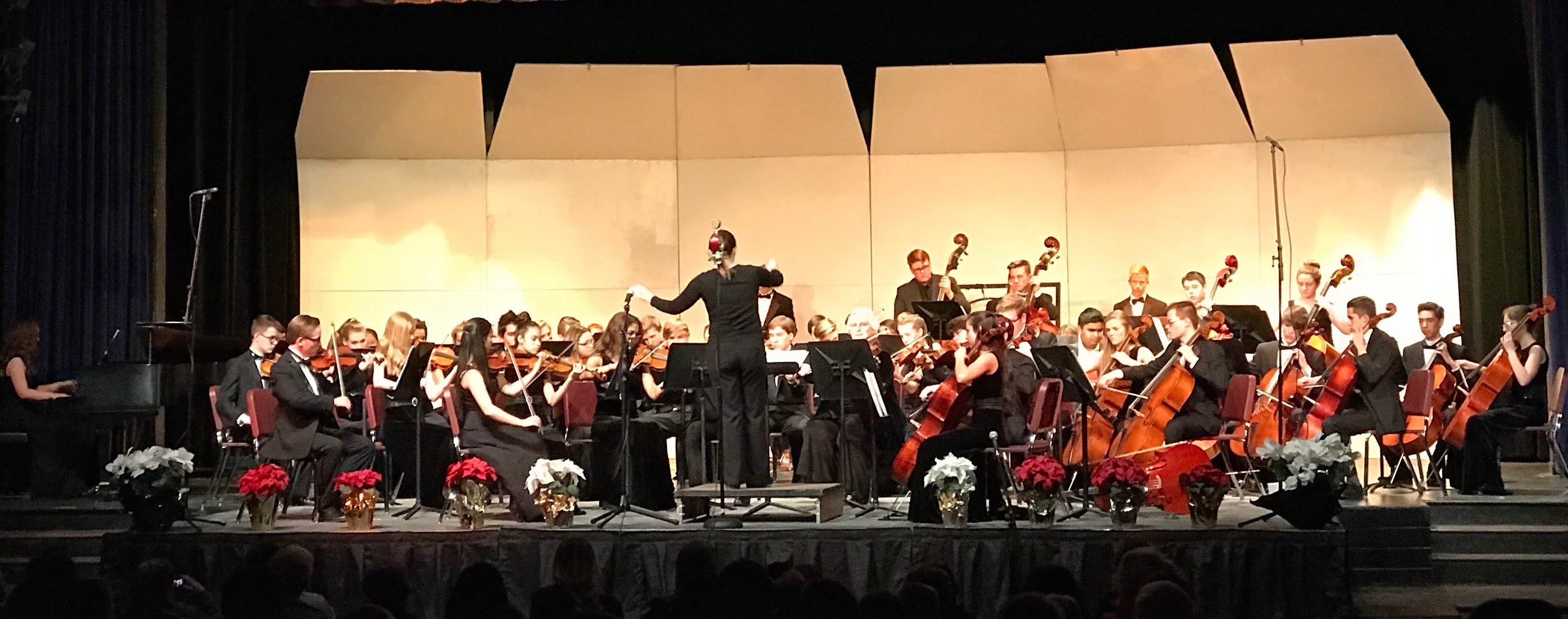 Douglas county high school orchestras for Orchestra house