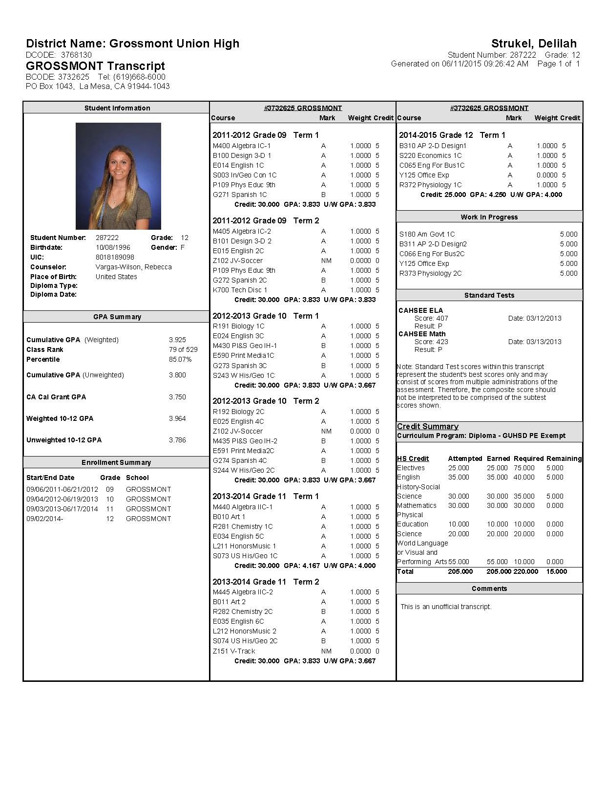 transcript delilah strukel s career portfolio throughout high school i have always done my best to get good grades my freshman year i worked hard and got a 3 8 gpa i also got straight o s in