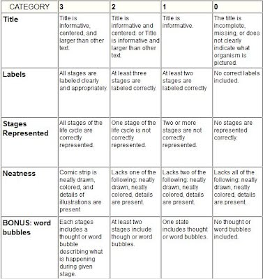 Rubric for assessing comic strip