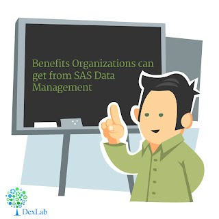 Benefits Organizations can get from SAS Data Management