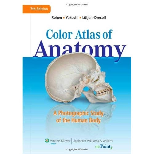 Download Color Atlas of Anatomy: A Photographic Study of the Human ...